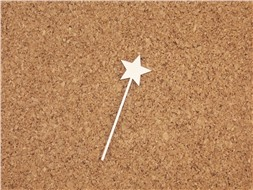 Палочка со звёздочкой