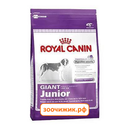 Корм royal canin гигантских пород собаки