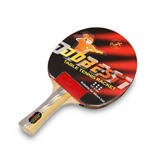 Ракетка для настольного тенниса Dobest BR01 6 звезд