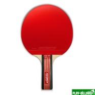 Weekend Теннисная ракетка Start line Level 200 New (прямая), интернет-магазин товаров для бильярда Play-billiard.ru. Фото 3