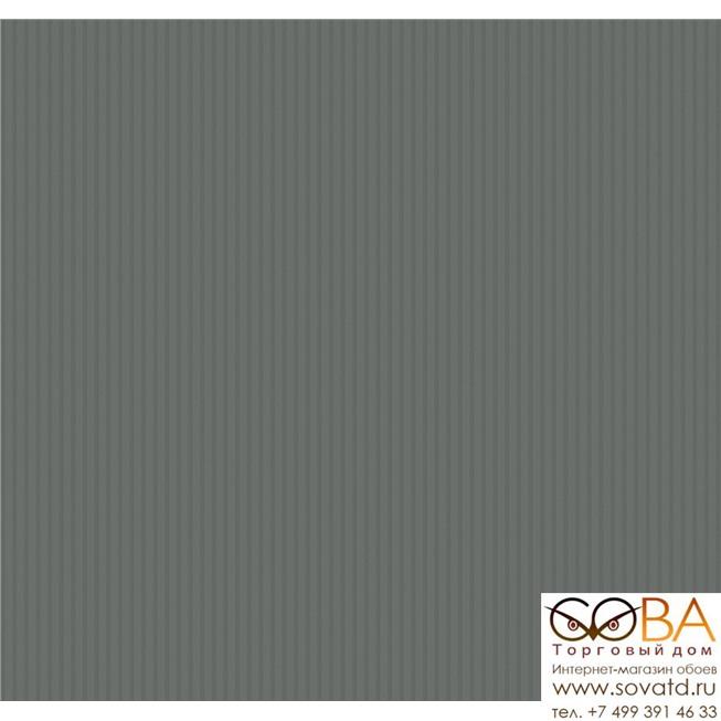 SD5008 Обои Loymina Shade купить по лучшей цене в интернет магазине стильных обоев Сова ТД. Доставка по Москве, МО и всей России