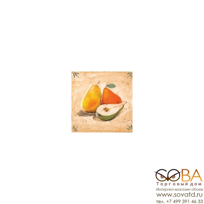 Декор Гурман  груша (D-499) 16,5х16,5 купить по лучшей цене в интернет магазине стильных обоев Сова ТД. Доставка по Москве, МО и всей России