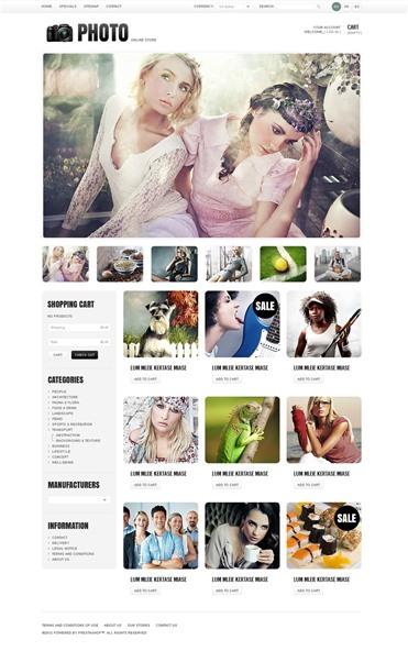 Art & Photo Gallery
