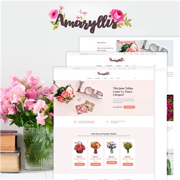 Amaryllis - Flower Shop