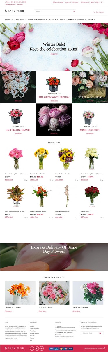 Lady Flor - Flower Shop Multipage Creative